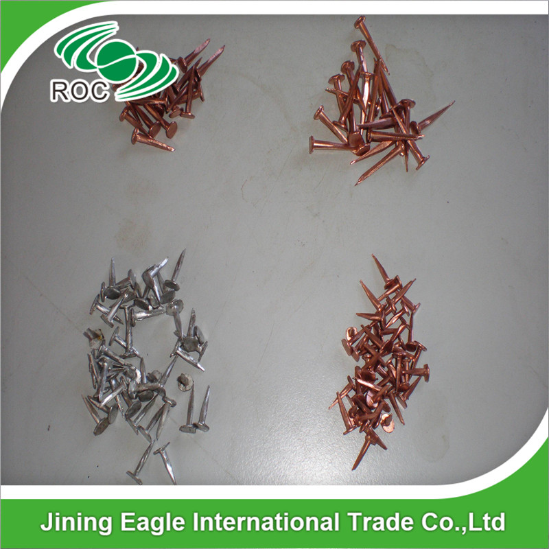 High quality fasteners Copper tacks nail