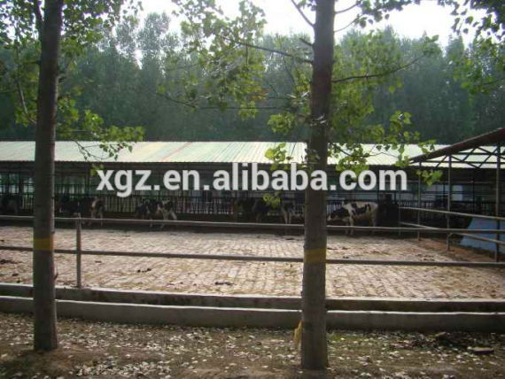prefab low cost cattle farm