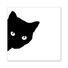 Kara Kedi Boyama Ve Tanıtım Promosyon Kara Kedi Boyama Ve Online