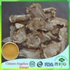 High Quality Organic Angelica Sinensis Extract