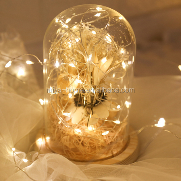 High quality mini Christmas decoration copper string light / LED copper wire lamp