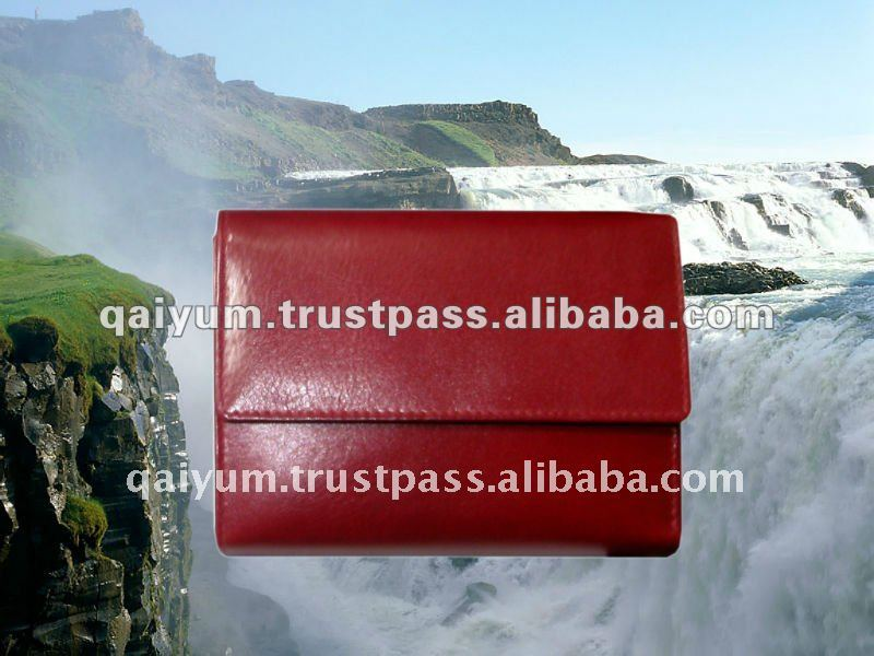 2012 Good Quality and Fashion Express Leather Purse