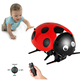 Arshiner Intelligent RC Ladybug Robot Toy,DIY Radio Control Electric Insect Toy Model with 2.4GHz wireless remote Control