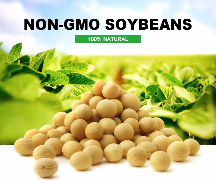 gmo soybeans Monsanto launched its roundup ready 2 xtend soybeans the new seeds are  suppose to battle superweeds that have evolved to resist the.