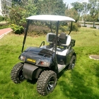 Popular 4 wheel 2 seat electric golf cart for adults