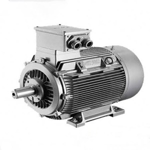 slow speed electric motor