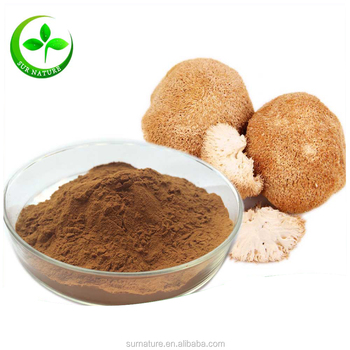 High Quantity Lion Mane Extract Powder 30% Polysaccharides