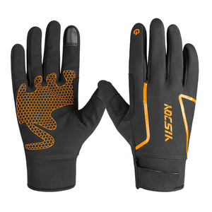 Factory Custom Outdoor Cycling Waterproof Poly Winter Screen Touch Running Other Sport Gloves