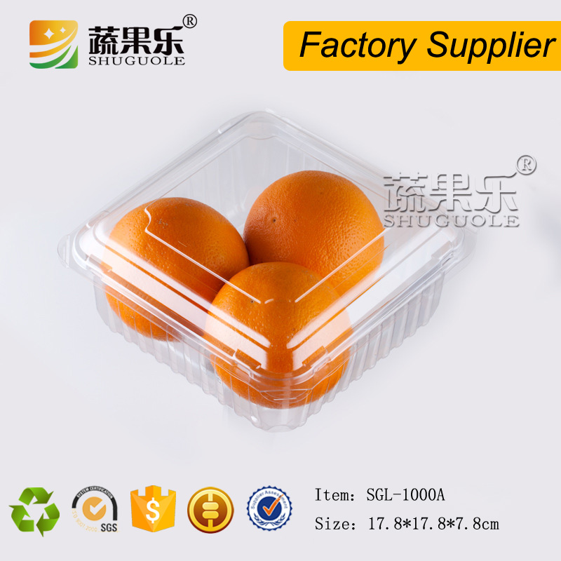 Popular disposable PET plastic fruit packing box