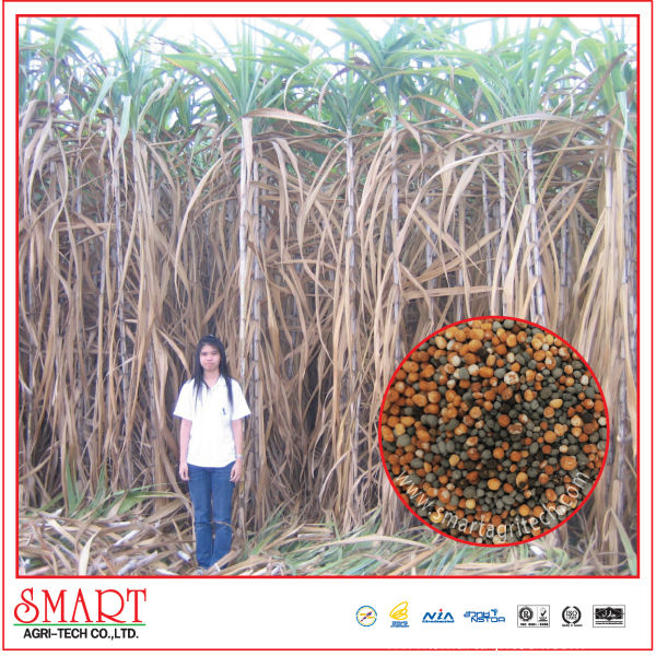 Sugar cane Fertilizer