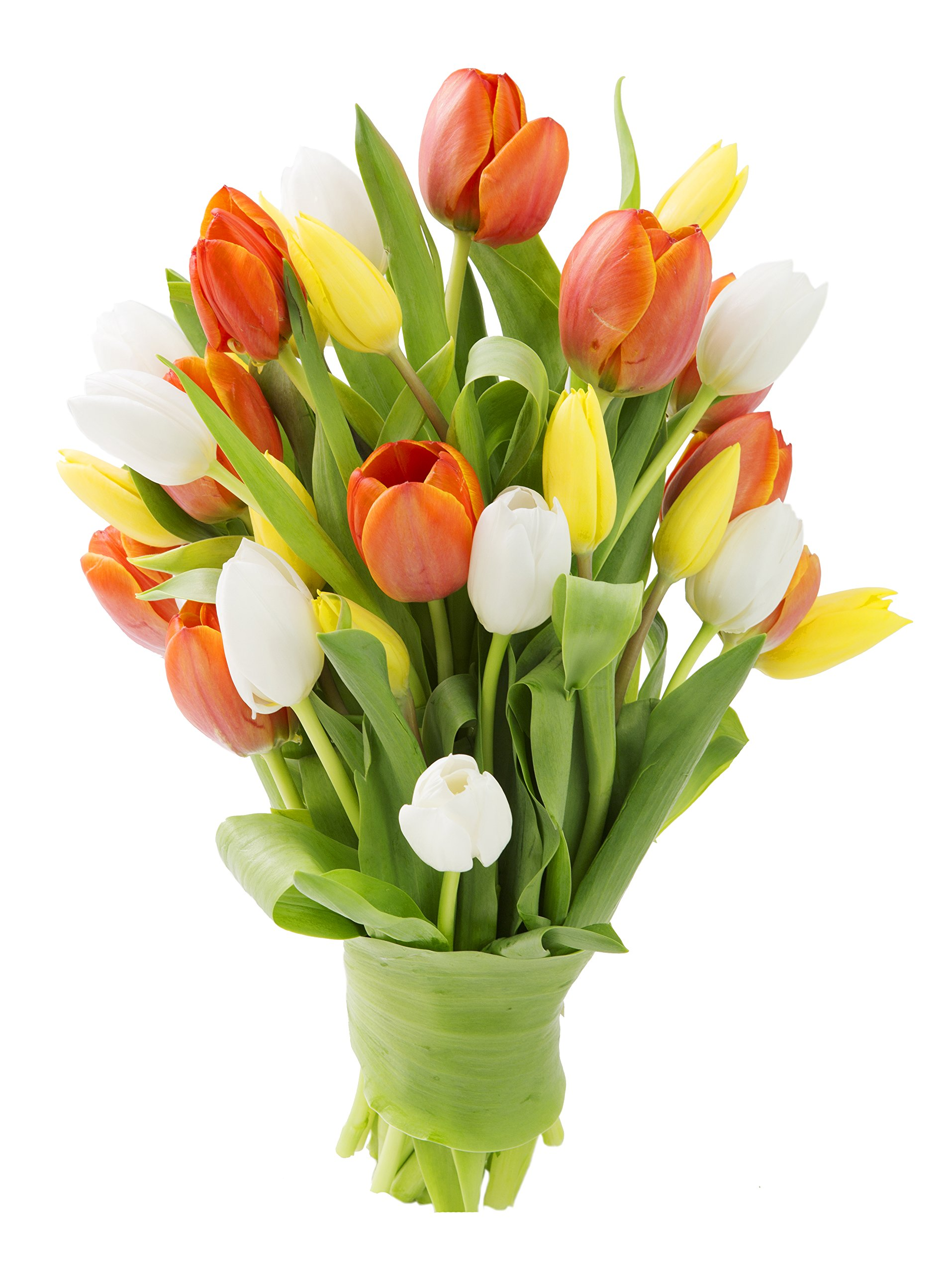 Cheap Fresh Pack Flowers Find Fresh Pack Flowers Deals On Line At