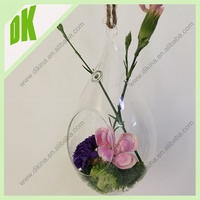 The Easiest Carnivorous plant for a terrarium, Air Plant Candle Holder , Clear small glass Hanging Globe plant Terrarium