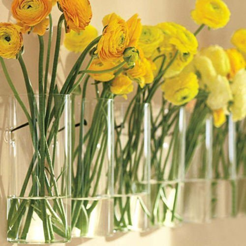 Buy Pack Of 6 Glass Planters Wall Hanging Planters Round Glass Plant