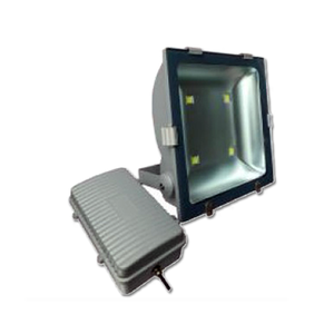 Led marine flood lights 30w 50w ip65 high power outdoor with meanwell driver CE FCC UL ROHS BRIDGELUX CHIP GREY HOUSING LM6