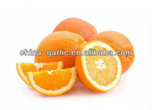 Wholesale Price Orange In Retail Packing For Netherlands