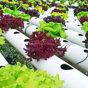 green house used commercial hydroponic grow systems
