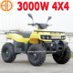 Bode New electirc 3000W 4X4 Electric ATV