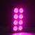 APO08 High PPF umol/J LED Lights with red blue channels for veg,clone,flowering