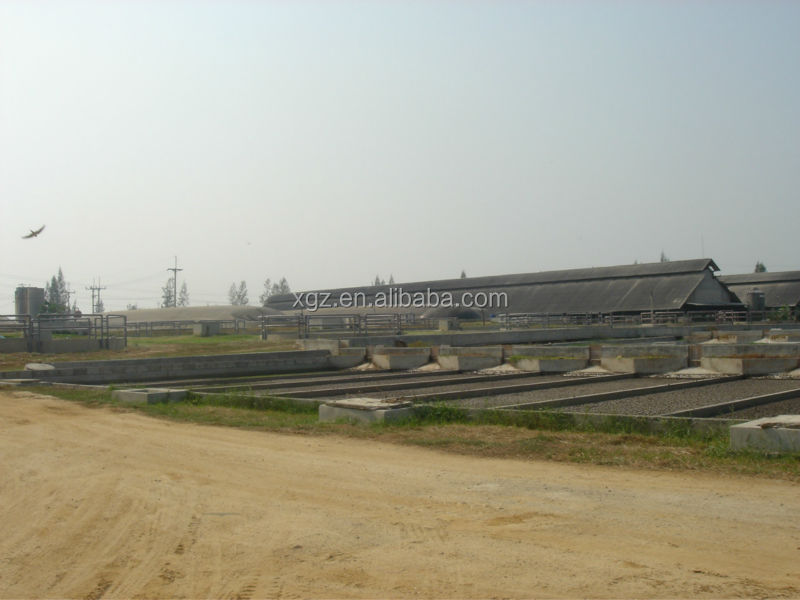 low price advanced automated pig farm in india