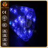 Twinkle LED Christmas lights for indoor and outdoor use and commercial grade.