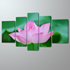 Large Lotus Flower Woods Canvas Painting Pictures Prints Photo Wall Art Decor 5 Panel Framed Artwork