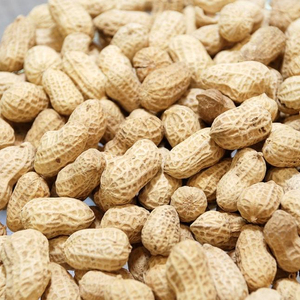 Raw Peanuts in shell price