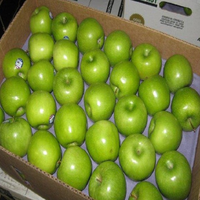 Cheap price green apple fruit supplier