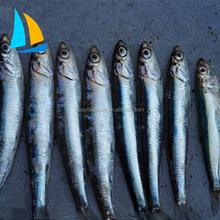 China Fish Price, China Fish Price Manufacturers and