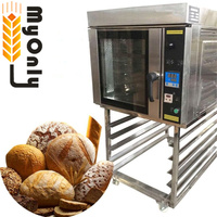 Gas combi oven/duck roasting oven convection oven/combi steamer oven