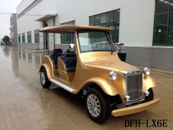 Factory directly supply electric golf cart 6 seats for sale DFH-LX6E