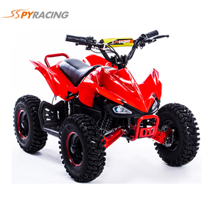 On Sale 800W Electric Kids Mini Quad Bike