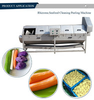 High wash rate automatic onion peeler machinery