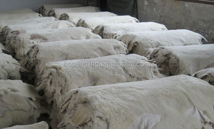 Cheap Sheepskin Linner Sheep Fur Lining dry salted sheep skin
