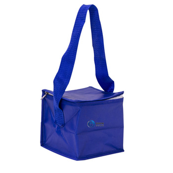 Water proof insulated lunch non woven eco friendly cooler handle bag