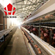 Bangladesh chicken farm with hot sale galvanizing batteries cages breeders coop for UAE chicken cage