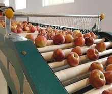 Automatic fruit tomato peach apple strawberry jam pulp production processing line