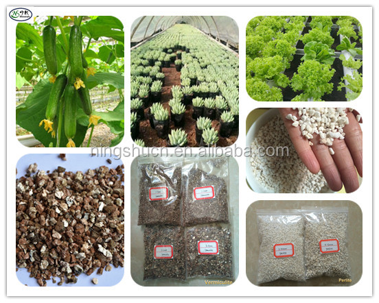 Hydroponic Farming Growing Substrates Perlite & Vermiculite for Soiless Growing Medium / Hydroponic Vertical Garden