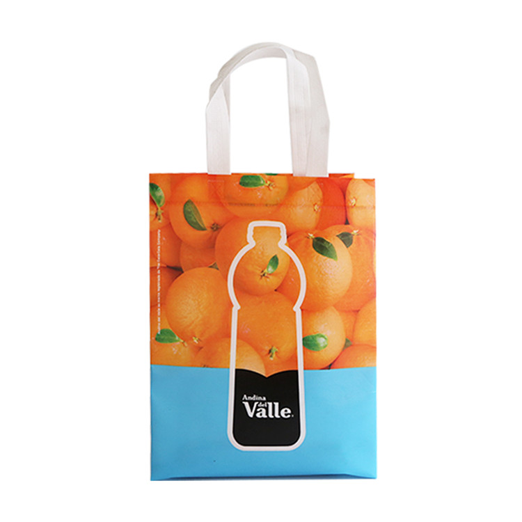 Custom Logo Non Woven Bag Wholesale Store Promotional Folding Cloth Tote Bag