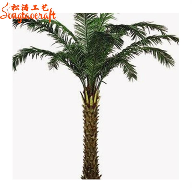 Middle East date palm trees phoenix sylvestris palm tree mature Silver Date  palm artificial