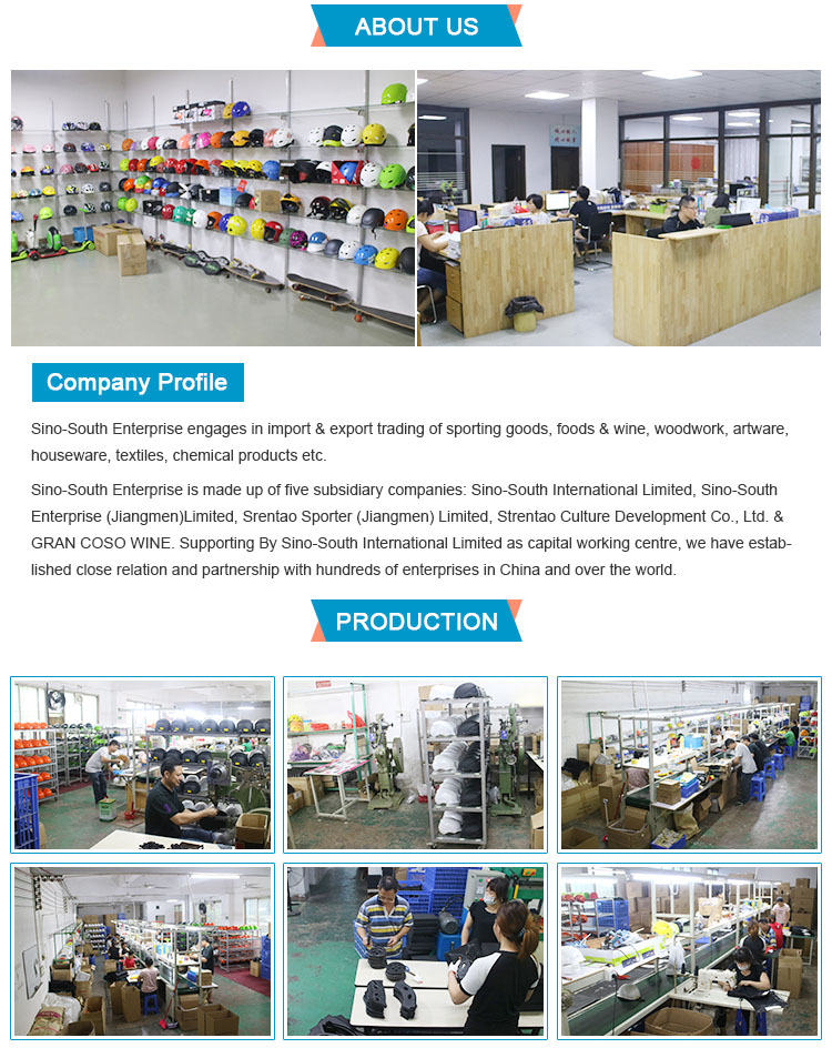 Company Overview - Sino-South Enterprise (Guangdong) Limited f3f7ccbc8