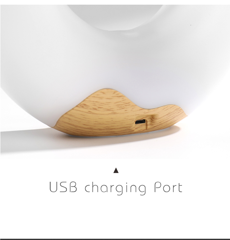Battery Desk Lamp Portable USB LED table lamp