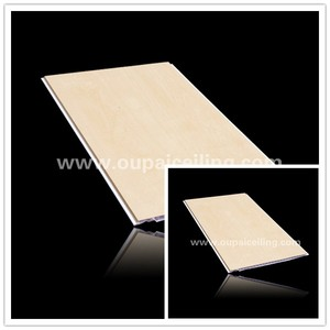 Plastic roof paneling for interior suspended ceiling
