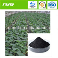 manufacture Seaweed extract fertilizer powder and flake liquid