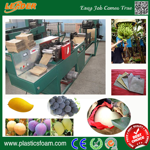 High quality Mango apple grape fruit paper protection bag making machine