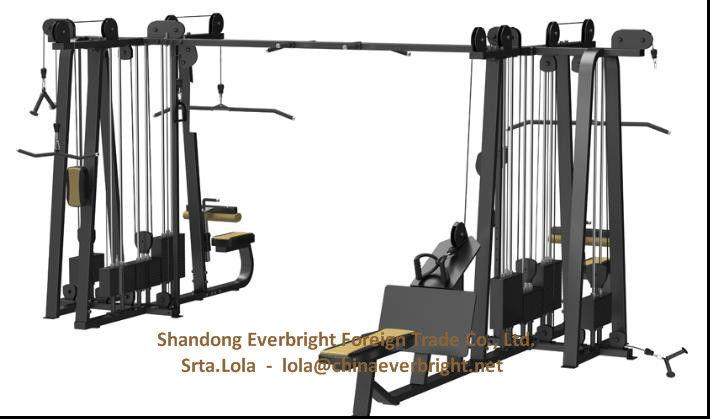 aparatos de gimnasio equipos de ejercicios de la aptitud