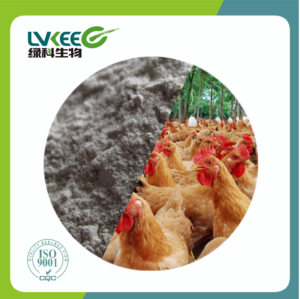 Promote Nutrition Efficacy and Feed Additive Probiotics 50 bilion cfu/g Bacillus Cereus Powder for aquaculture