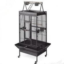 African Grey Playtop Cheap Strong Metal Large Parrot Cage /bird cage