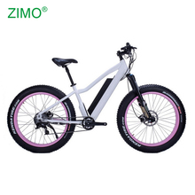 2018 Hot 48V Bafang Motor Pedal Assist Electric Fat Bike