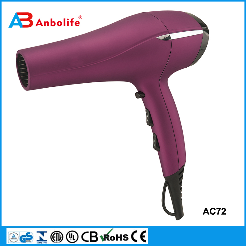 hair dryers for professional
