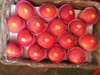 2016 fresh Qinguan apple/ 80%+ color qinguan apple/premium quality qinguan apple